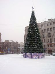 Christmas tree in the St. Petersburg street