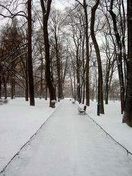 Mikhailovsky Park (behind the Russian Museum in St. Petersburg).