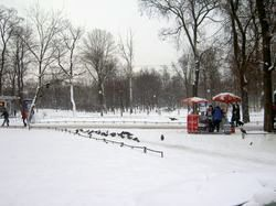Winter St. Petersburg park